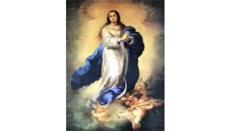 inmaculadanoticia